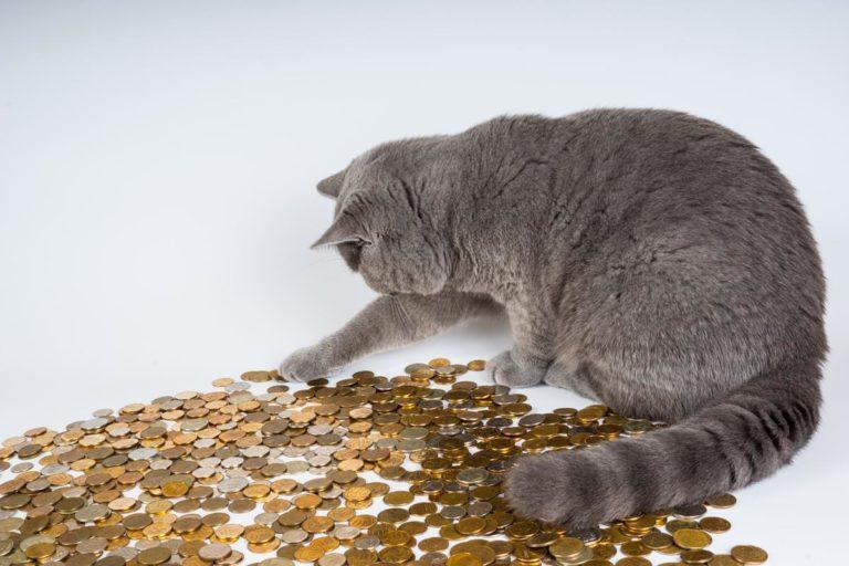 Co to jest refinansowanie pożyczki? Na czym polega?